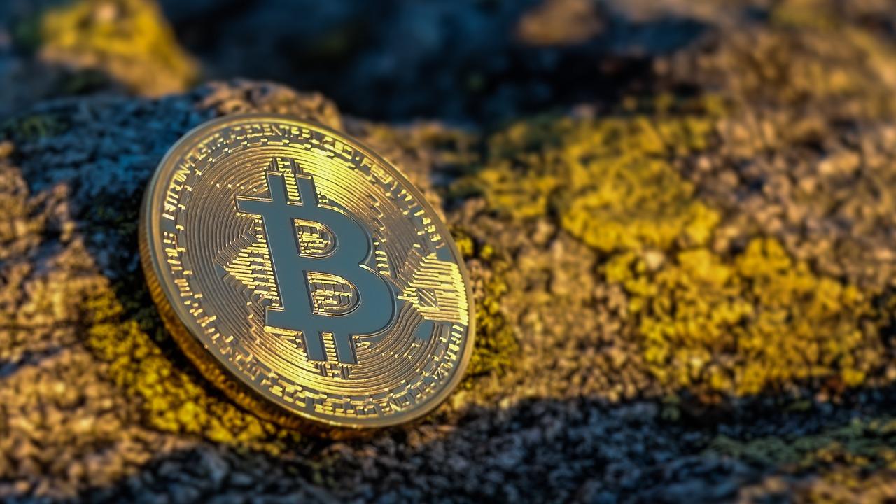 Die Plattform Bitcoin Profit in Indien nutzen